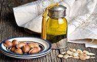 كل ما تريد معرفته عن الزيت المغربي أرغان