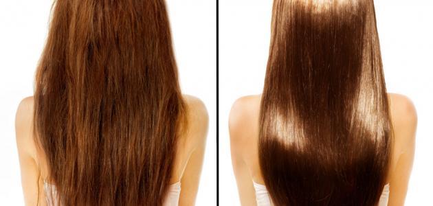 فوائد زيت الأركان على الشعر