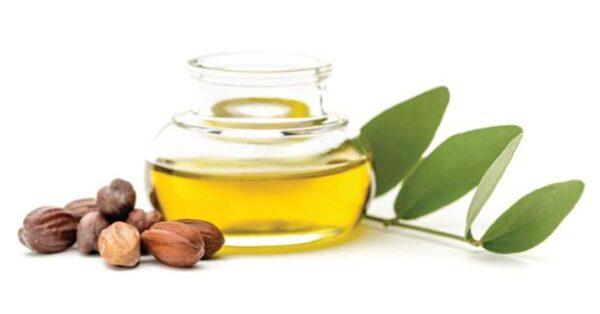 فوائد الزيت المغربي أرغان