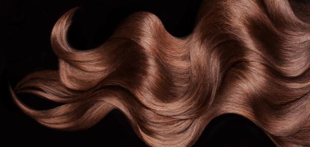 افضل زيت لترطيب الشعر-