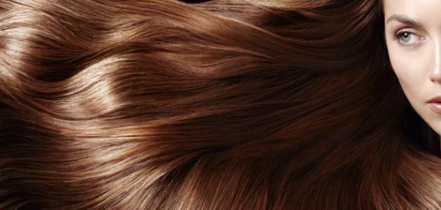 افضل زيت لترطيب الشعر